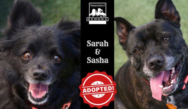 Sarah and Sasha